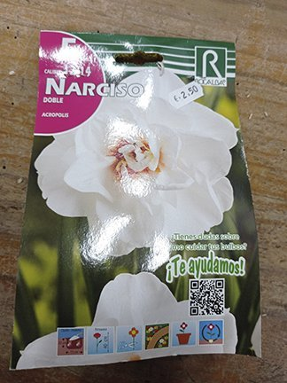 Narciso doble, 5 bulbos para plantar, casa Rocalba