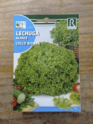 Semillas para plantar Lechuga lollo bionda marca Rocalba